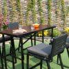 outdoor wicker garden furniture RABR 010 5